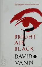 Bright Air Black - David Vann (ISBN 9780434023349)