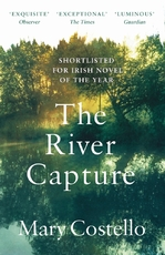 The river capture - mary costello (ISBN 9781786898043)