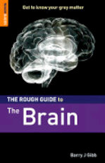 The Rough Guide to The Brain - Barry Gibb, Barry J. Gibb (ISBN 9781843536642)