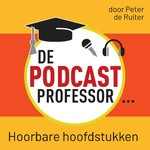 De Podcast Professor - Peter de Ruiter (ISBN 9789491833687)