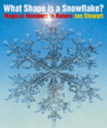 What Shape is a Snowflake? - Ian Stewart (ISBN 9780297607236)