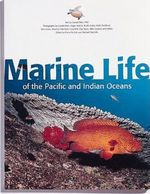 Marine Life of Indonesia and Southeast Asia
