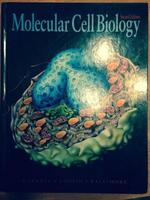 Mol.Cell.Bio. 2ed - James E. Darnell, Harvey F. Lodish, David Baltimore (ISBN 9780716720782)