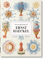 Taschen 40 Art and science of ernest haeckel - Rainer Willmann (ISBN 9783836584289)