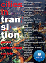 Cities in transition - Wowo Ding (ISBN 9789462082649)