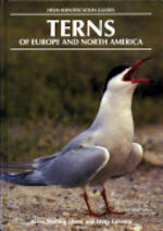 Terns of Europe and North America - Klaus Malling Olsen, Hans Larsson (ISBN 9780713640564)