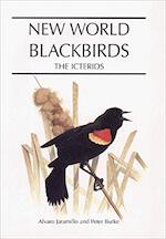 New World Blackbirds - Alvaro Jaramillo, Peter Burke (ISBN 9780713643336)