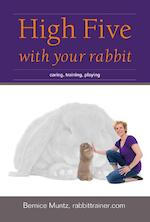High five with your rabbit - Bernice Muntz (ISBN 9789081771344)