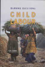 Child Labour - Georges Kristoffel Lieten (ISBN 9789048520992)