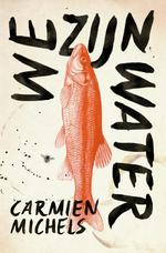 We zijn water - Carmien Michels (ISBN 9789085425342)