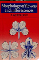 Morphology of Flowers and Inflorescences