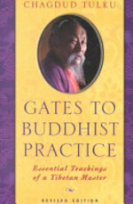Gates to Buddhist Practice - Chagdud (Tulku) (ISBN 9781881847311)
