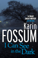 I can see in the dark - karin fossum (ISBN 9781846556135)