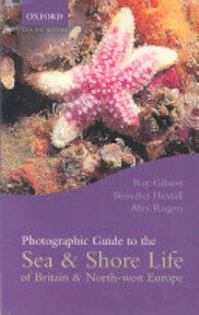 Photographic Guide to the Sea and Shore Life of Britain and North-west Europe - Ray Gibson, Benedict Hextall, Alex Rogers (ISBN 9780198507093)