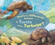 What's the Difference Between a Turtle and a Tortoise? - Trisha Speed Shaskan (ISBN 9781404855465)