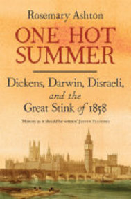 One Hot Summer - Rosemary Ashton (ISBN 9780300227260)