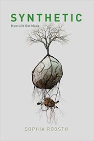 Synthetic - How Life Got Made - Sophie Roosth (ISBN 9780226440460)