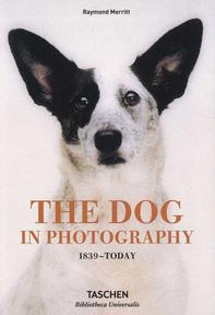 The dog in photography (ISBN 9783836567473)