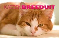 Katten Breeduit
