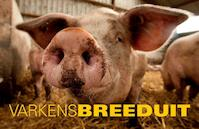 Varkens Breeduit