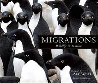 Migrations - Barbara Sleeper (ISBN 9781608877140)