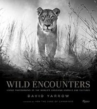 Wild Encounters - (ISBN 9780847858323)