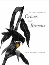In the Company of Crows and Ravens - John M. Marzluff, Tony Angell (ISBN 9780300100761)