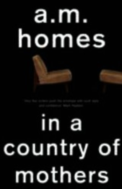 In A Country Of Mothers - A.M. Homes