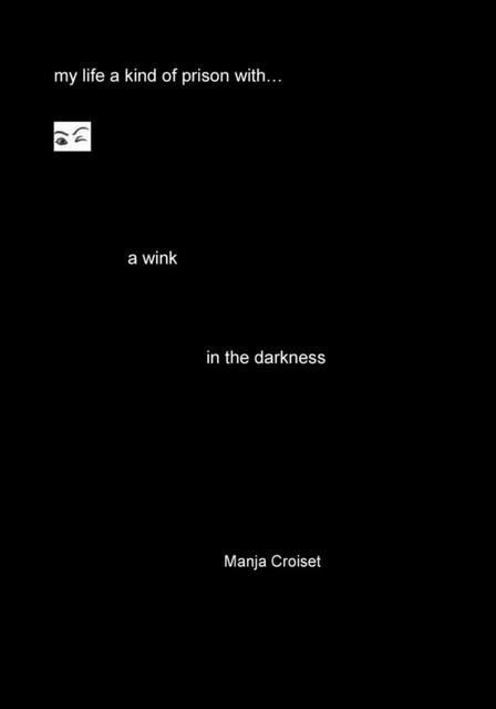 A wink in the darkness - Manja Croiset