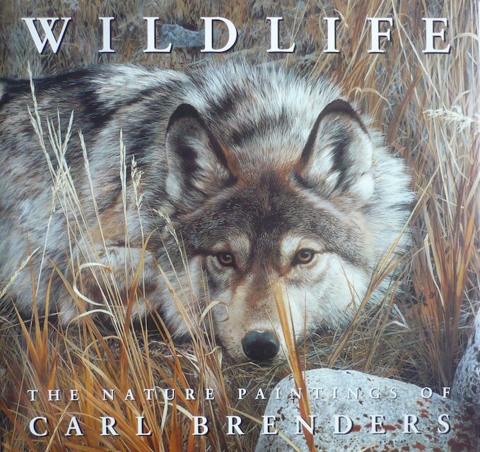 Wildlife the Nature Paintings of Carl Brenders - Carl Brenders