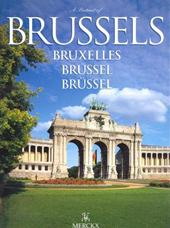 A portrait of Brussels Brux...