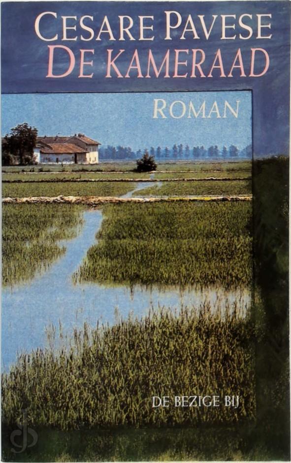 De kameraad roman