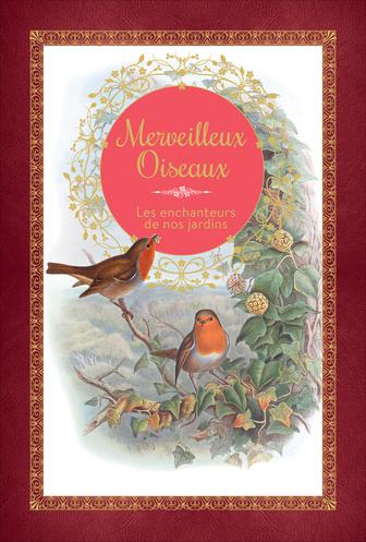 Guilhem Lesaffre - Merveilleux oiseaux