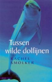 Tussen wilde dolfijnen