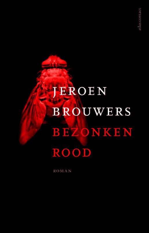 Jeroen Brouwers - Bezonken rood