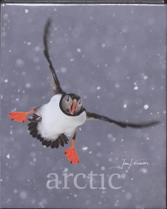 Jan Vermeer, Frieda Van Essen - Arctic