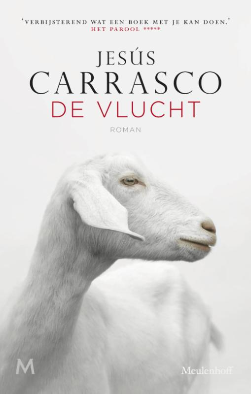Jesús Carrasco - Vlucht