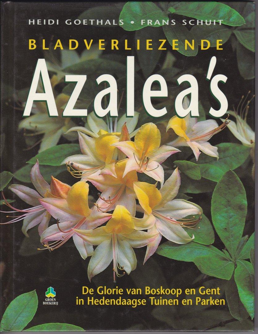 Bladverliezende azalea's de...